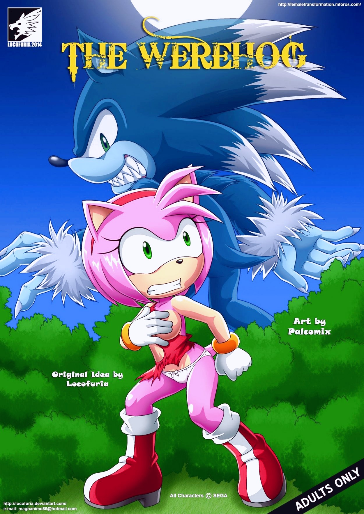 THE WEREHOG porn comic page 01 on category Sonic The Hedgehog