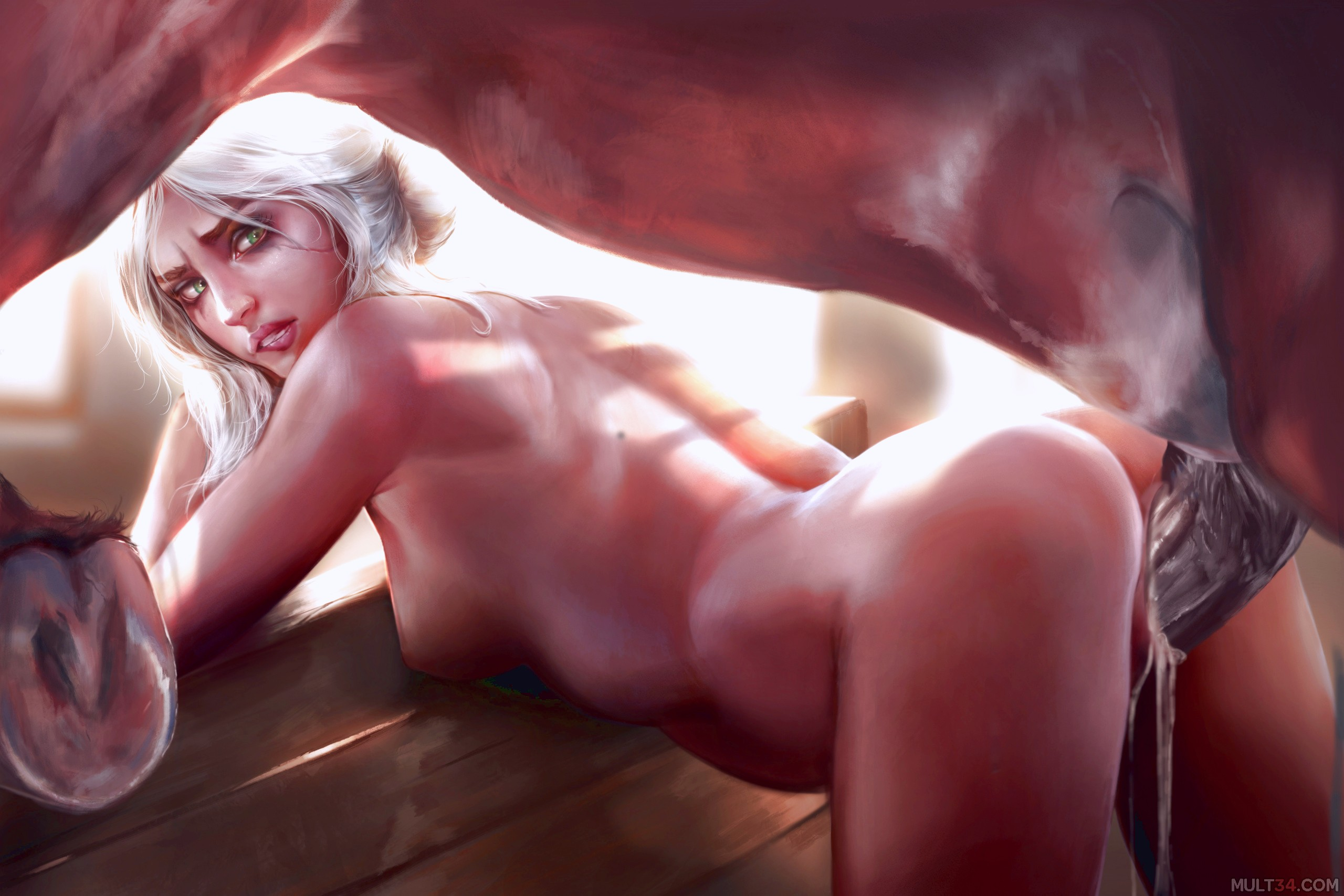 The Witcher porn pics 1
